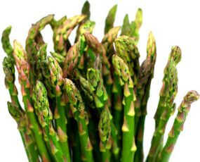The top few inches of KB3 Hybrid asparagus against a white background