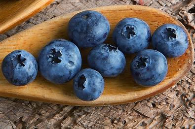Blueberry_Arlen-1