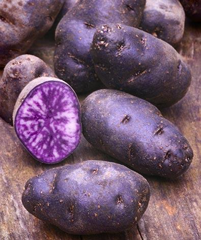 Potato Blue-1