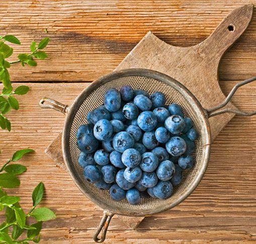 Blueberries_Legacy