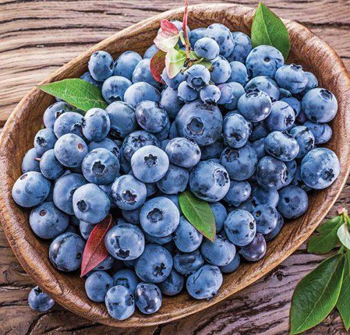 Blueberry_Blueray