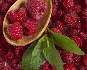 Raspberry_Brandywine