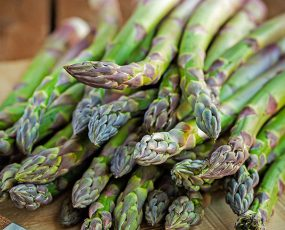 A vibrant green bundle of Jersey Giant asparagus on a table