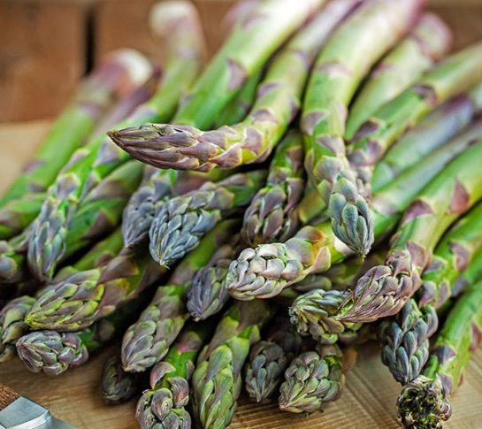 Asparagus_Jersey_Giant