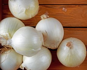 Onion_White