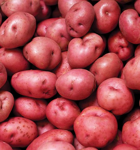 Potato_Red
