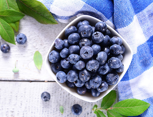 Blueberry 'Top Hat' - DeGroot
