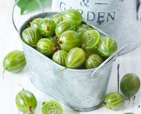 Gooseberry Pixwell A