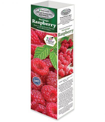 RS512 Raspberry Web